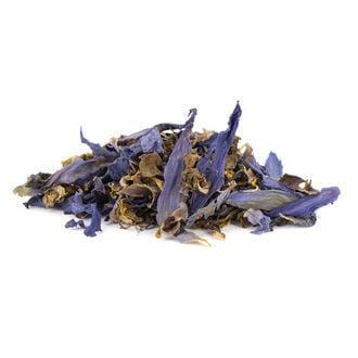 Lotus Azul - Nymphaea caerulea