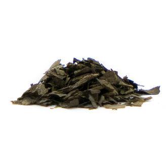 Extracto de Salvia 15x