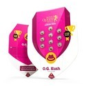 OG Kush (Royal Queen Seeds) feminizada