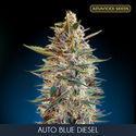 Auto Blue Diesel (Advanced Seeds) feminizada