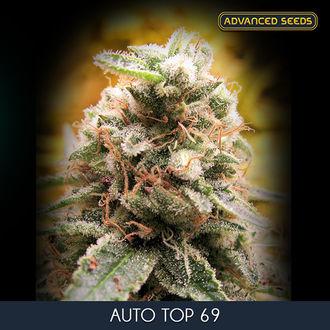 Auto Top 69 (Advanced Seeds) feminizada