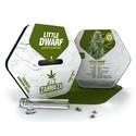 Little Dwarf Autoflowering (Zambeza) feminizada