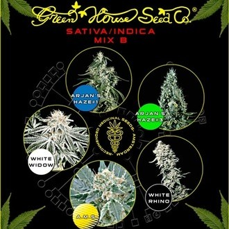 Sativa/Indica Mix B (Greenhouse Seeds) feminizada