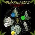 Sativa/Indica Mix B (Greenhouse Seeds) feminizada