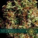 NY Diesel (Vision Seeds) feminizada