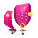 Royal Cheese - Fast Flowering (Royal Queen Seeds) feminizada