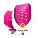 Bubble Kush (Royal Queen Seeds) feminizada