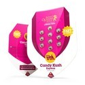 Candy Kush Express - Fast Flowering (Royal Queen Seeds) feminizada