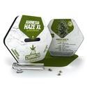 Amnesia Haze XL Autoflowering (Zambeza) feminizada