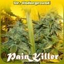 PainKiller (Dr. Underground) feminizada