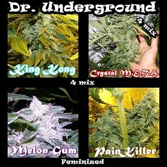 Killer Mix (Dr. Underground) feminizada