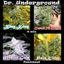 Surprise Killer Mix (Dr. Underground) feminizada