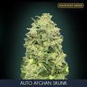 Auto Afghan Skunk (Advanced Seeds) feminizada