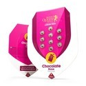 Chocolate Haze (Royal Queen Seeds) feminizada