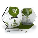 Vanilla Ice Autoflowering (Zambeza) feminizada