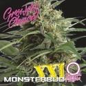 Monsterbud XXL Auto (Growers Choice) Feminizada