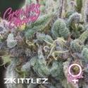 Zkittlez (Growers Choice) Feminizada
