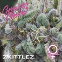 Zkittlez (Growers Choice) Feminizada