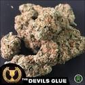 Devil's Glue (Devil's Harvest) feminizada