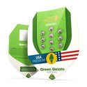Green Gelato Automatic (Royal Queen Seeds) feminizada