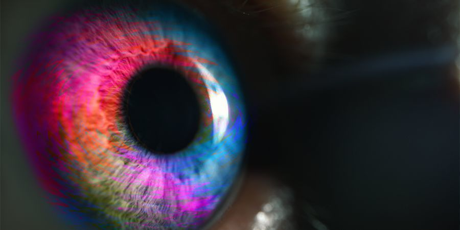 Nivel 2 De Una Experiencia Psicodélica - Timothy Leary