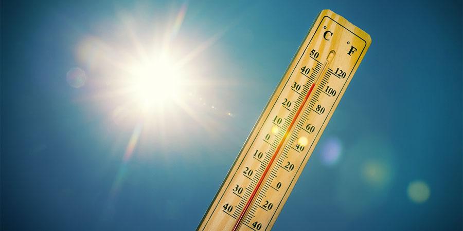 temperaturas altas marihuana