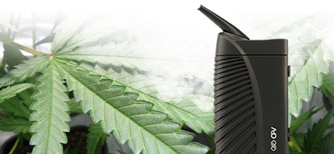 Fumar Marihuana Vaporizador