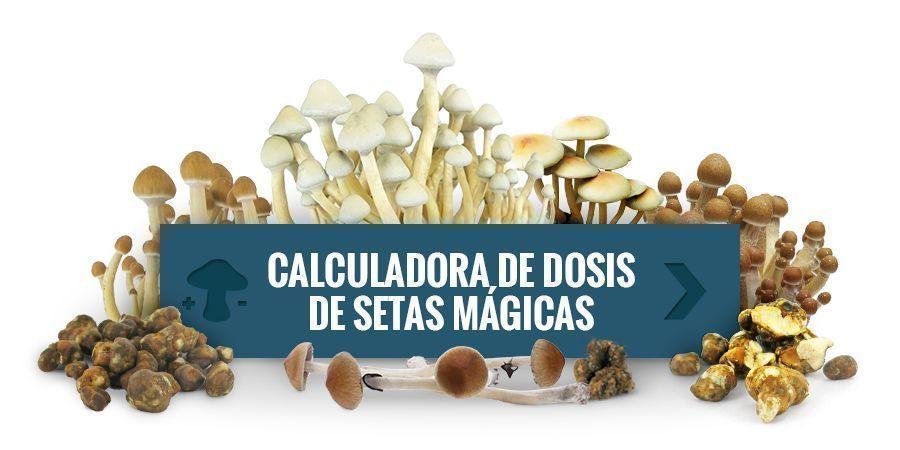 Calculadora De Dosis De Setas Mágicas
