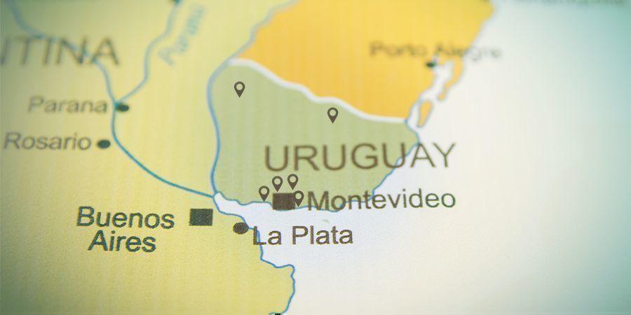 Menos De 20 Farmacias Cuentan Con Una Licencia Para Vender Cannabis En Uruguay