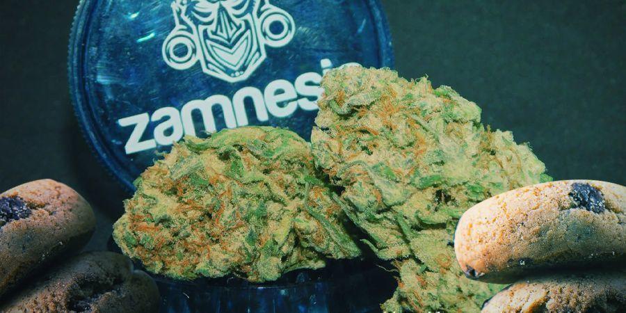 Las Mejores Variedades Sativa Para Hacer Comestibles De Cannabis