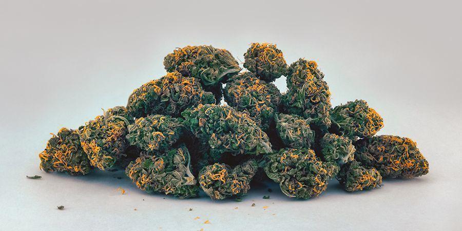 Amarillo Y Naranja (Carotenoides) Cogollos De Marihuana