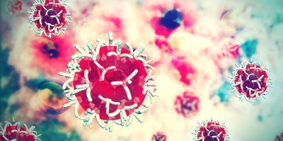 Escutelaria Puede Inhibir El Crecimiento De Las Células De Cancer