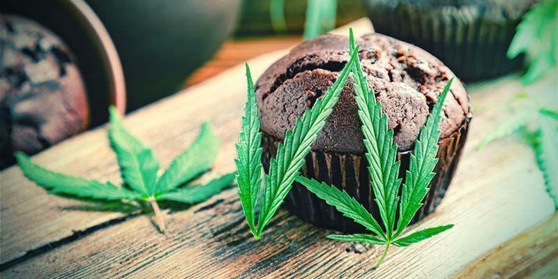 La Calidad De Los Comestibles De Marihuana Comerciales Es Cuestión De Suerte