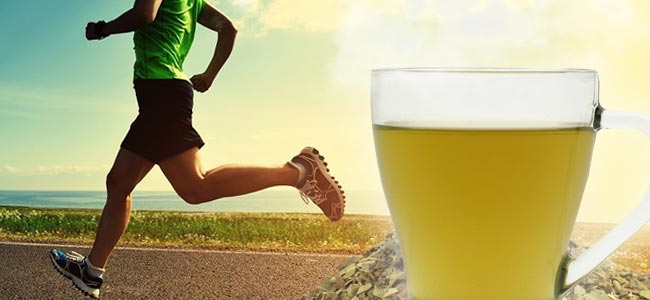 Beneficios Del Mate Para La Salud