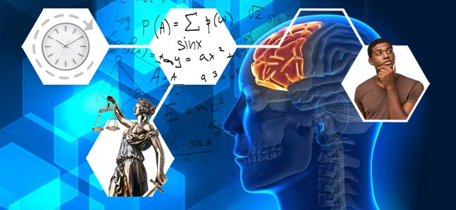 Córtex Prefrontal Funciones