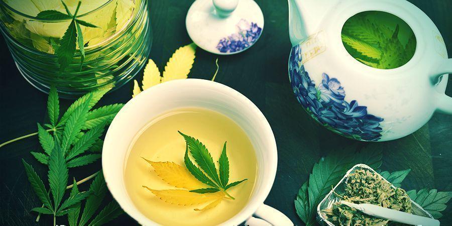 Beber Infusiones De Cannabis Medicinal