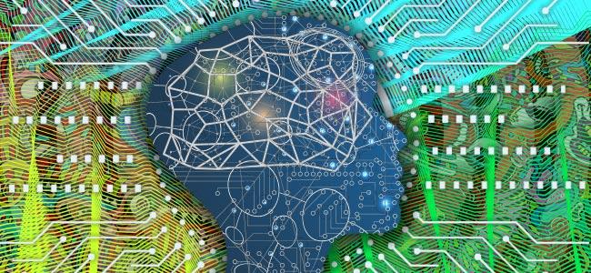 Cómo Afecta La Salvia Al Cerebro