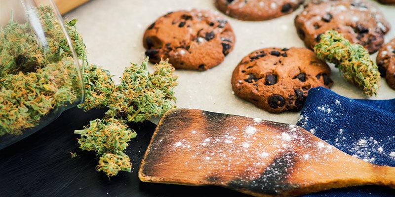 Marihuana Ayudar Con Aumento Peso
