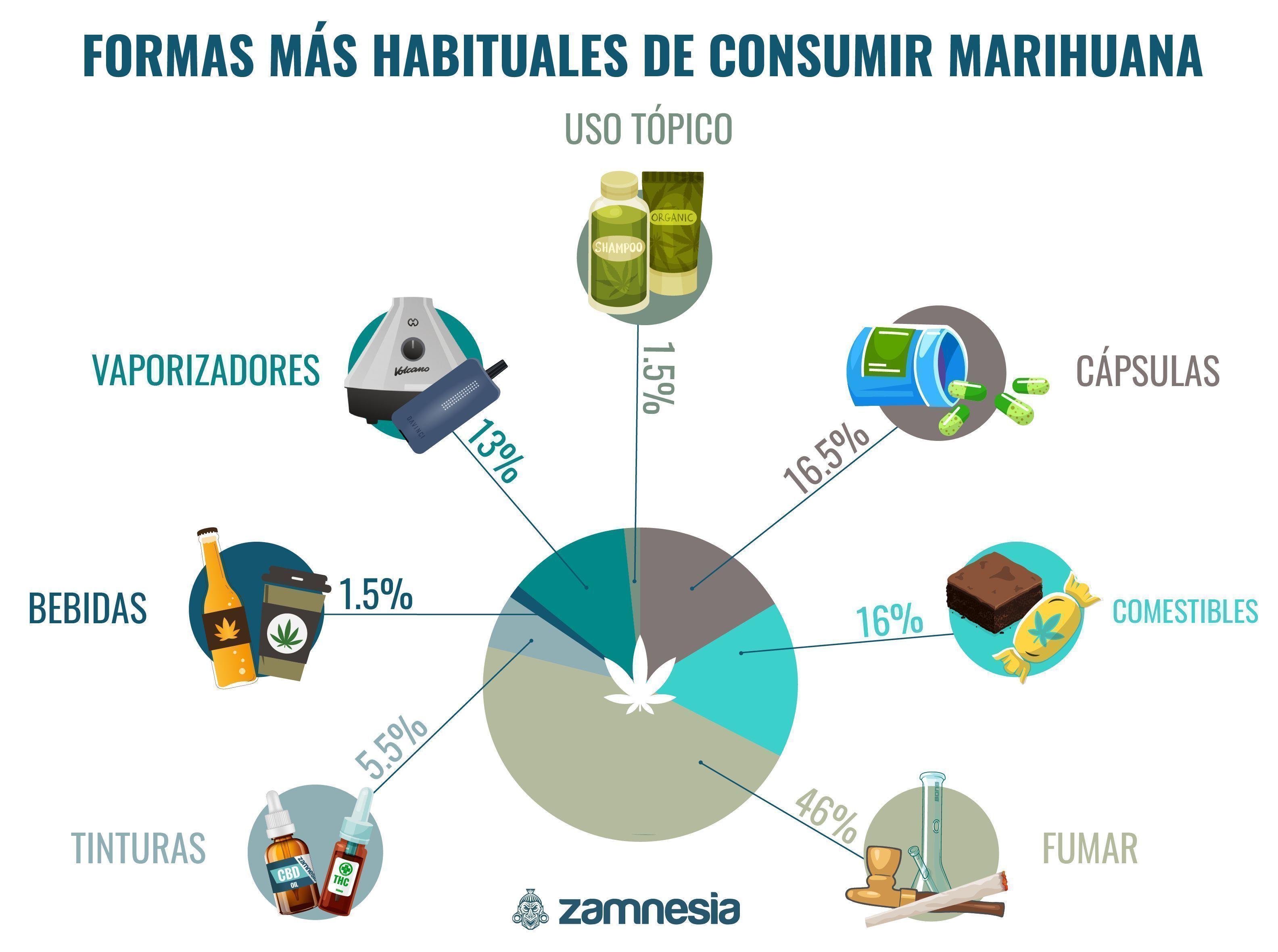 Las Formas Más Populares De Consumir Marihuana Infographic