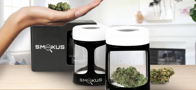 Smokus Focus - The Stash