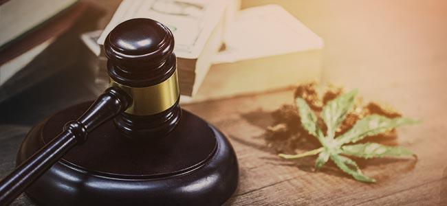CANNABIS LEGAL EN CANADÁ: ¿QUÉ DICE LA LEY?