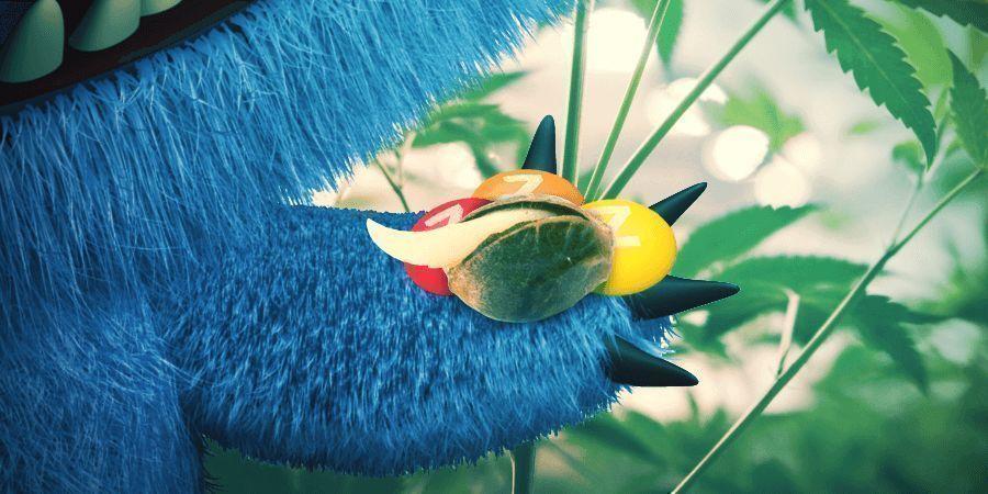La Monster Zkittlez De Zamnesia Seeds Es Una Variedad Ganadora