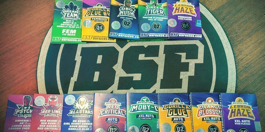 BANCO DE SEMILLAS DEL MES: BSF SEEDS