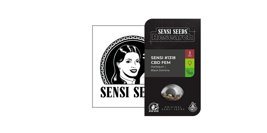 Sensi 1318 CBD (Sensi Seeds Research)