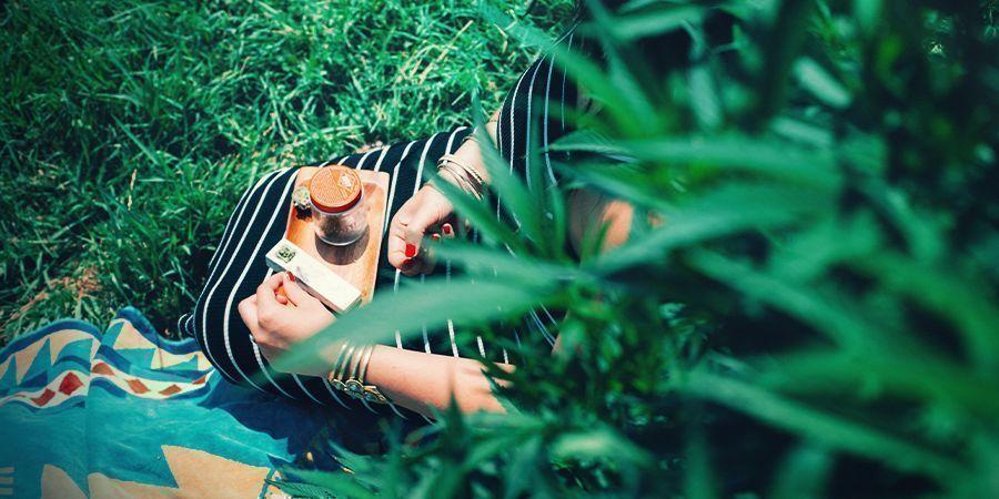 Consumir hierba de manera responsable y moderada