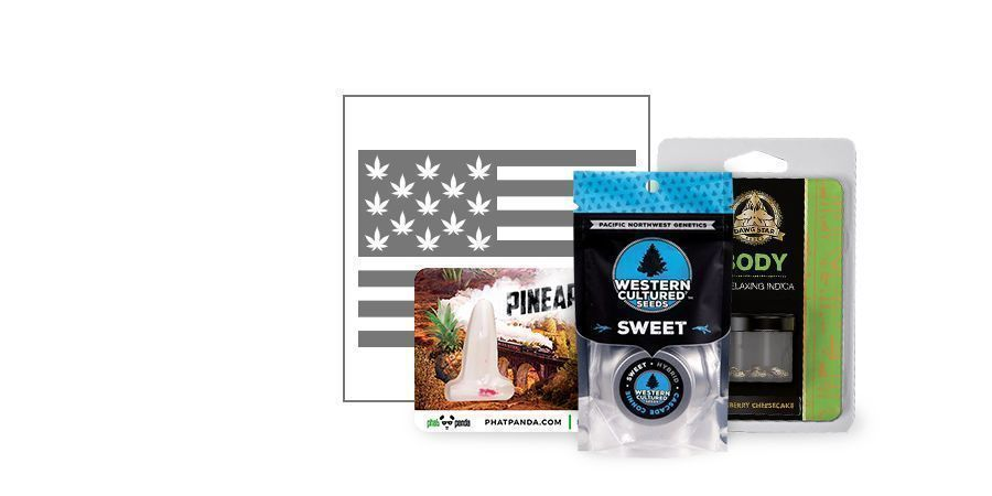 Top 10 Semillas De Marihuana De USA