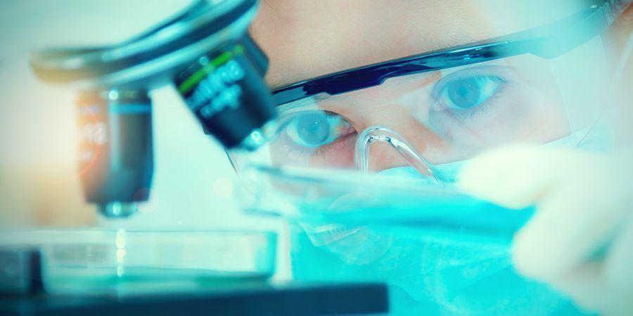 ¿Puede El CBC Jugar Un Papel En El Futuro De La Medicina Cannábica?