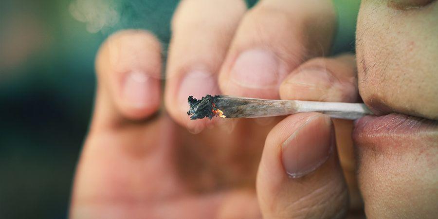 Biodisponibilidad: Fumar Cannabis