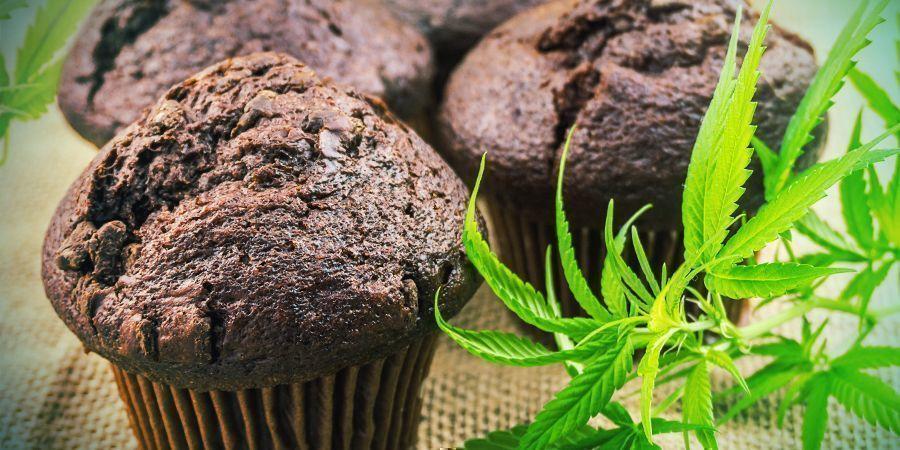 Biodisponibilidad: Comestibles Cannábicos