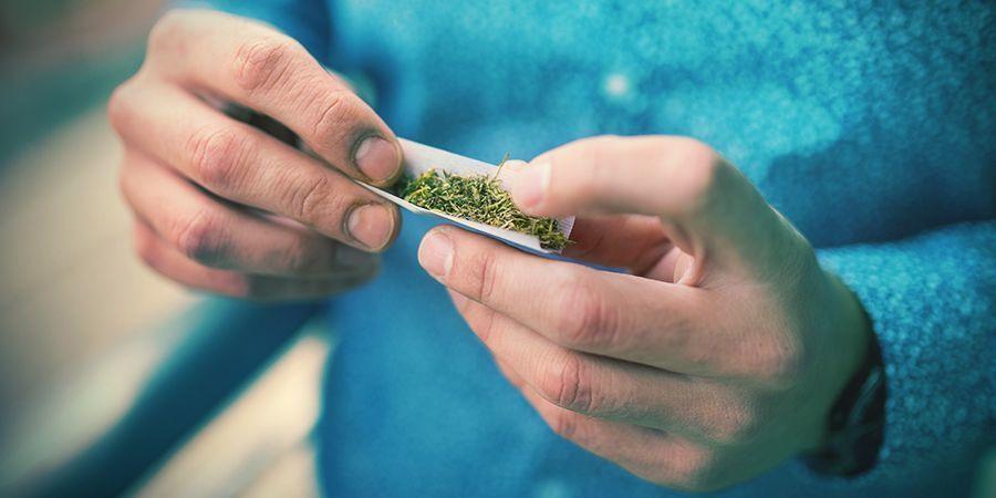 El Cannabis No Sirve Únicamente Para Colocarse